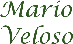 Mario Velozo pavidez